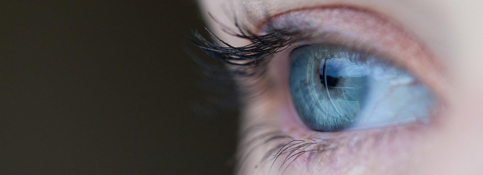 Borimo se za zdrave oči, oster vid in lep pogled.